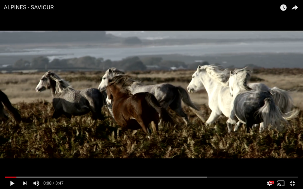 Screen Shot 2018-02-22 at 10.21.00.png