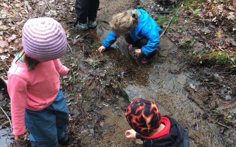 little explorers.jpg