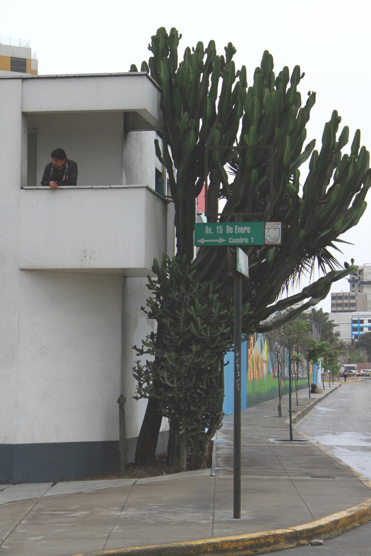 lima2.jpg