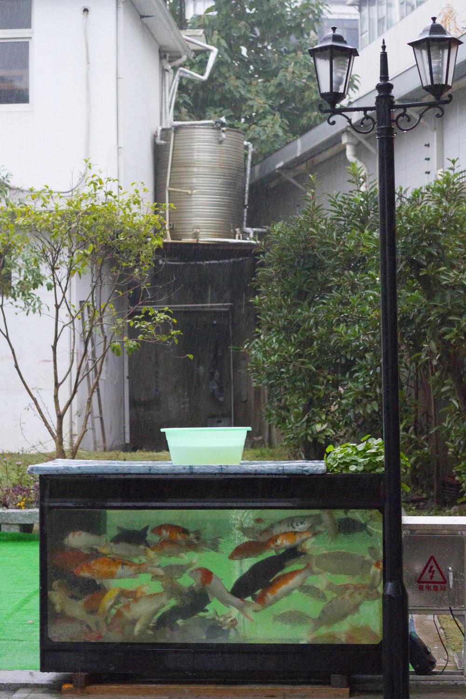 shanghai21.jpg