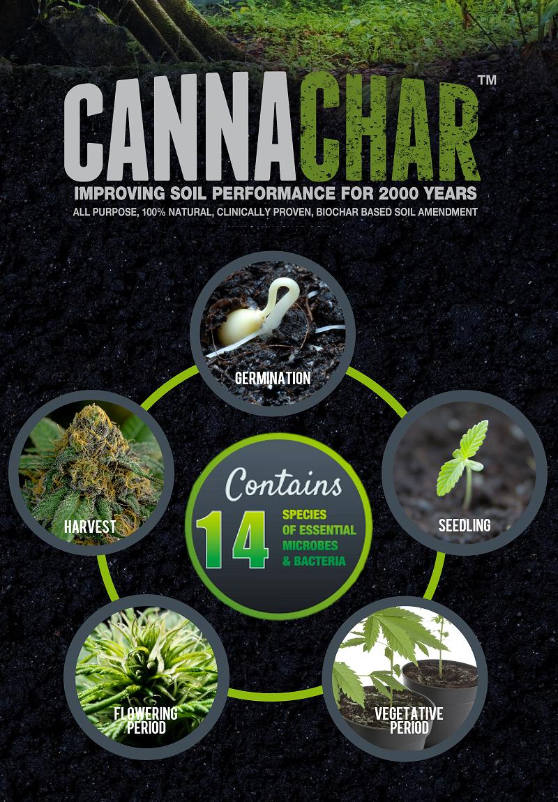 CannaChar (2).png