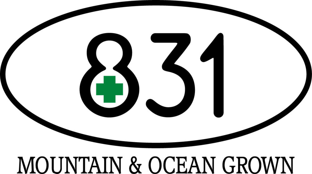 831 Icon TEXT Logo Final.png