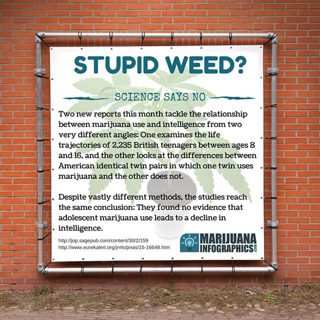 Gotta ❤️ #science!  #dope #hemp #endthedrugwar #branding  #strains #ganja #mmj  #drugpolicy #legalizeit #love #cannabis #stonermeme #cannabiscommunity #contentmarketing #picoftheday #weedstagram #420 #legalize #maryjane #weed #blunt #infographic #infographics  #smoking #business  #greenrush #pot  #marijuanainfographics #weedhumor MarijuanaInfographics.com
