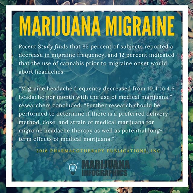 #dope #hemp #endthedrugwar #migraine  #strains #ganja #mmj  #drugpolicy #legalizeit #love #cannabis #stonermeme #cannabiscommunity #contentmarketing #picoftheday #smoke #weedstagram #420 #legalize #maryjane #weed #blunt #infographic #infographics  #smoking #business  #greenrush #pot  #marijuanainfographics #weedhumor MarijuanaInfographics.com