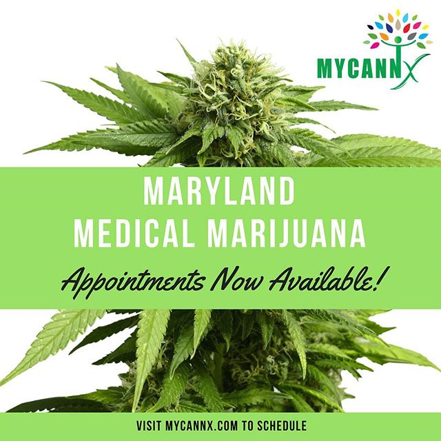 Need medical marijuana in DC or Maryland? Go to @mycannx  MyCannx.com  #dope #hemp #endthedrugwar #dc  #strains #ganja #mmj  #drugpolicy #legalizeit #love #cannabis #stonermeme #cannabiscommunity #maryland #picoftheday #smoke #weedstagram #420 #legalize #maryjane #weed #blunt #infographic #infographics #smoking #business #greenrush #pot#marijuanainfographics #weedhumor MarijuanaInfographics.com