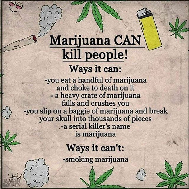 #dope #hemp #endthedrugwar #branding  #strains #ganja #mmj  #drugpolicy #legalizeit #love #cannabis #stonermeme #cannabiscommunity #contentmarketing #picoftheday #smoke #weedstagram #420 #legalize #maryjane #weed #blunt #infographic #infographics #smoking #business #greenrush #pot#marijuanainfographics #weedhumor MarijuanaInfographics.com