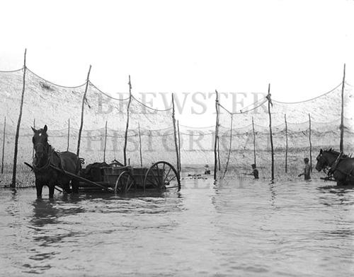 7. 1970.10.129 – Inshore Fish Weir