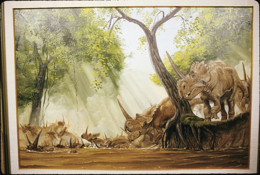 Painting by Greg Paul showing a reconstruction of a herd of ceratopsians crossing a river in flood.