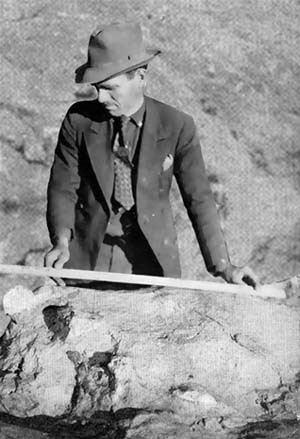 Roland T. Bird, the perfect depression-era paleontologist.