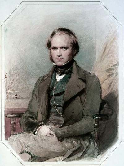 Charles Darwin. Image courtesy of wikimedia commons.
