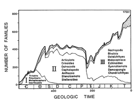 """A Kinetic Model of Phanerozoic Taxonomic Diversity: III. Post-Paleozoic Families and Mass Extinctions""  Paleobiology  10 (1984)."