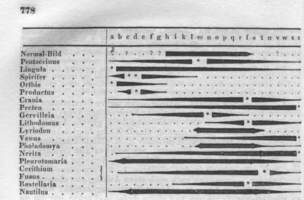 H.G. Bronn, Index Palaeontologicus, Oder, Übersicht Der Bis Jetzt Bekannten Fossilen Organismen (Stuttgart: E. Schweizerbart, 1848).