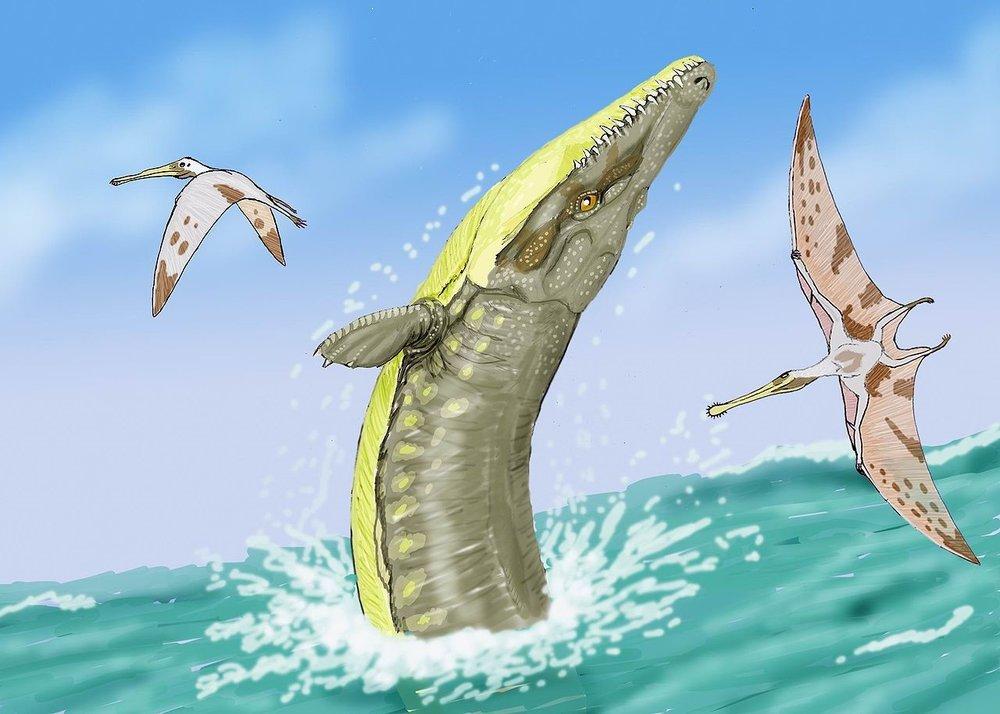Dimitry Bogdanov's reconstruction of  Dakosaurus maximus , a representative Thalattosuchian. Not a crocodile.