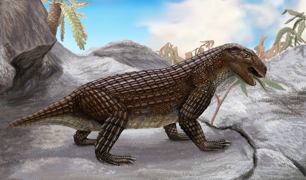 Simosuchus clacki