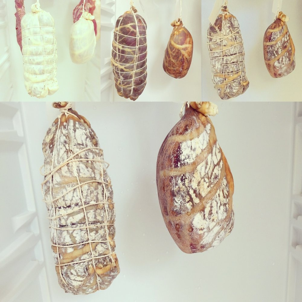 Stages of developement from incubation through drying to maturation.  Cappacollo and Noisette de Jambon.    Images: Paul Burton