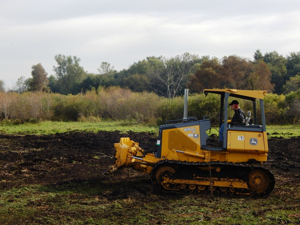 Clearing Land for Pond.JPG