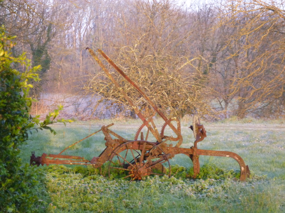 An old plough on the front lawn. A decorative item but I'm not sure it will stay! 01/03/16