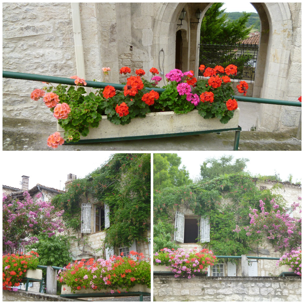 Some pictures from the summer. Near the Hotel de Ville, towards the top of the hill, Montaigu de Quercy.