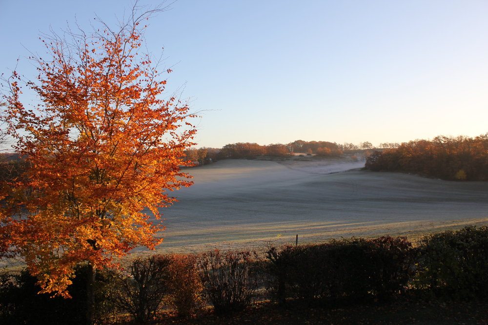 Morning mists and frosty fields.