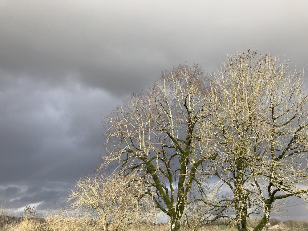 Rainy skies.