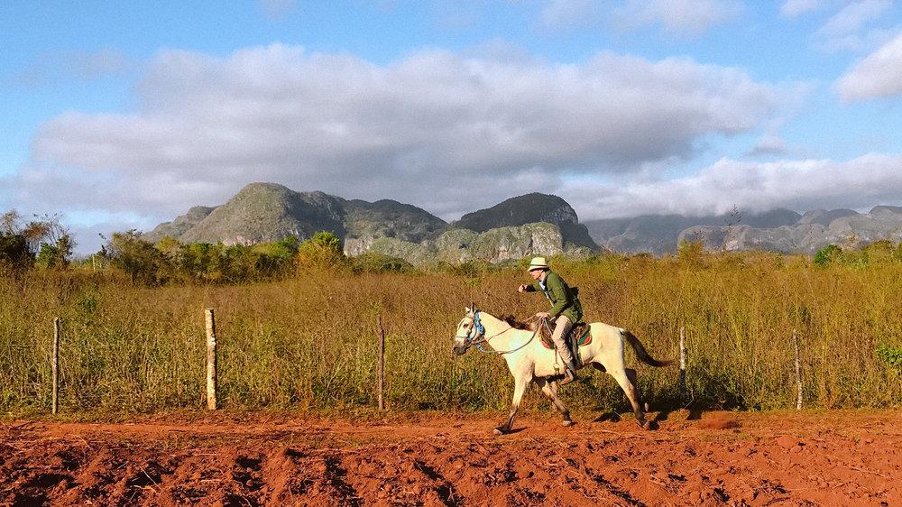 cuba-candela-vinales-horse