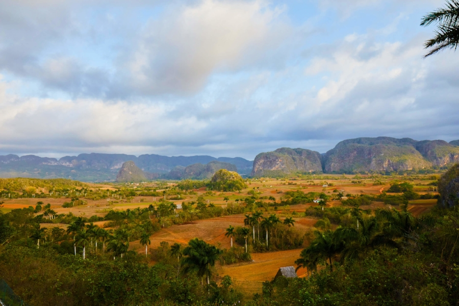 mariposa-journey-vinales-countryside-cuba-travel.jpg