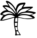royal_palm_cuba_journey_icon.jpg