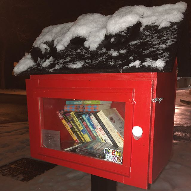 The fresh snow is looking beautiful on some of our #RogersEdge Little Free Libraries! #edgewaterreads #48thwardchicago #rogersedge