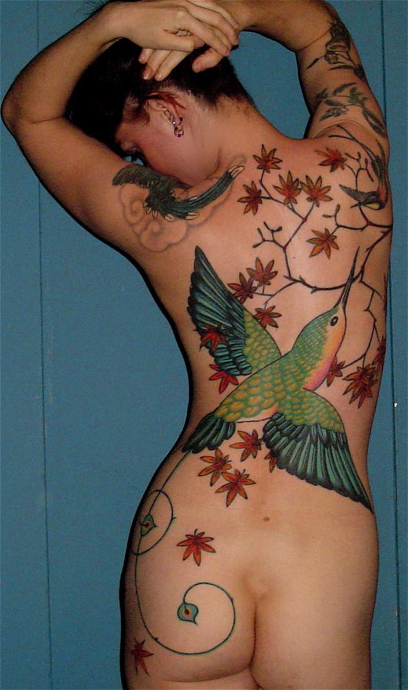 hummingbird+back.jpg