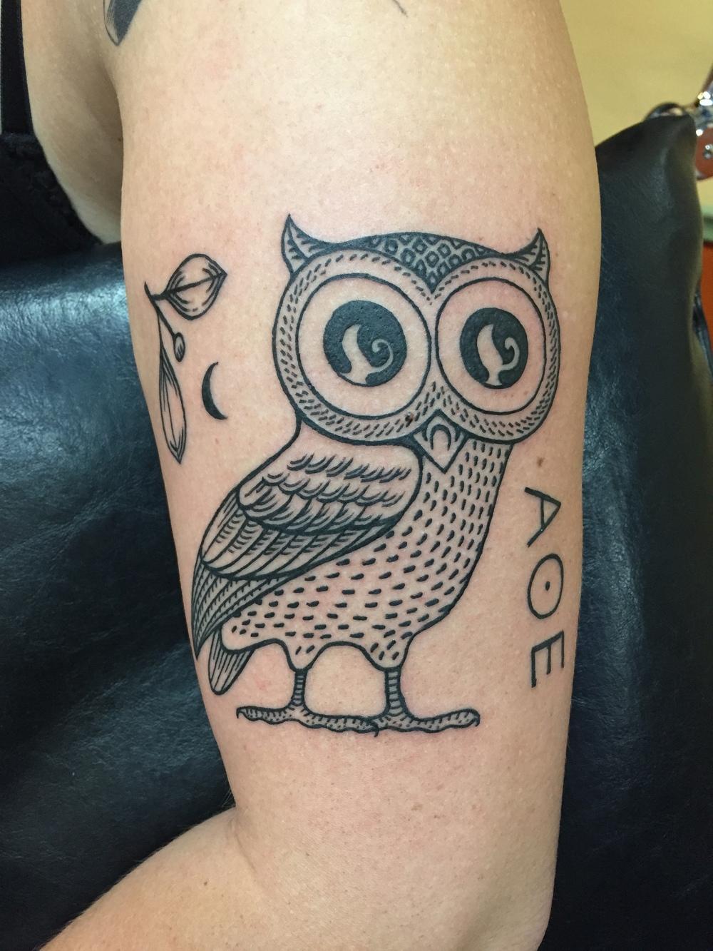 Roman Owl.JPG