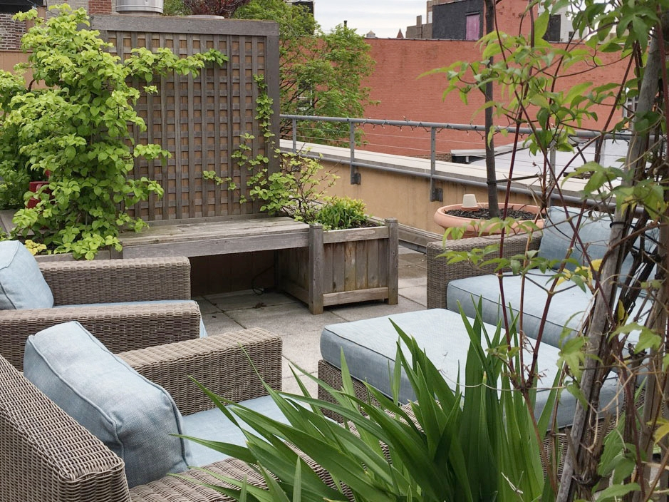 arbor-rooftop-terrace-garden-by-edible-petals-brooklyn5.jpg