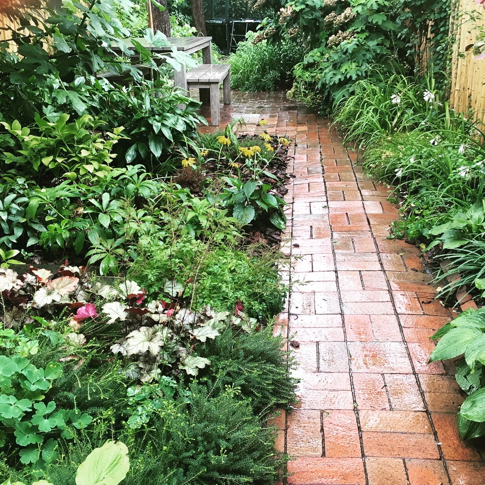 After a summer downpour, the brick path highlights the lushness of the garden.