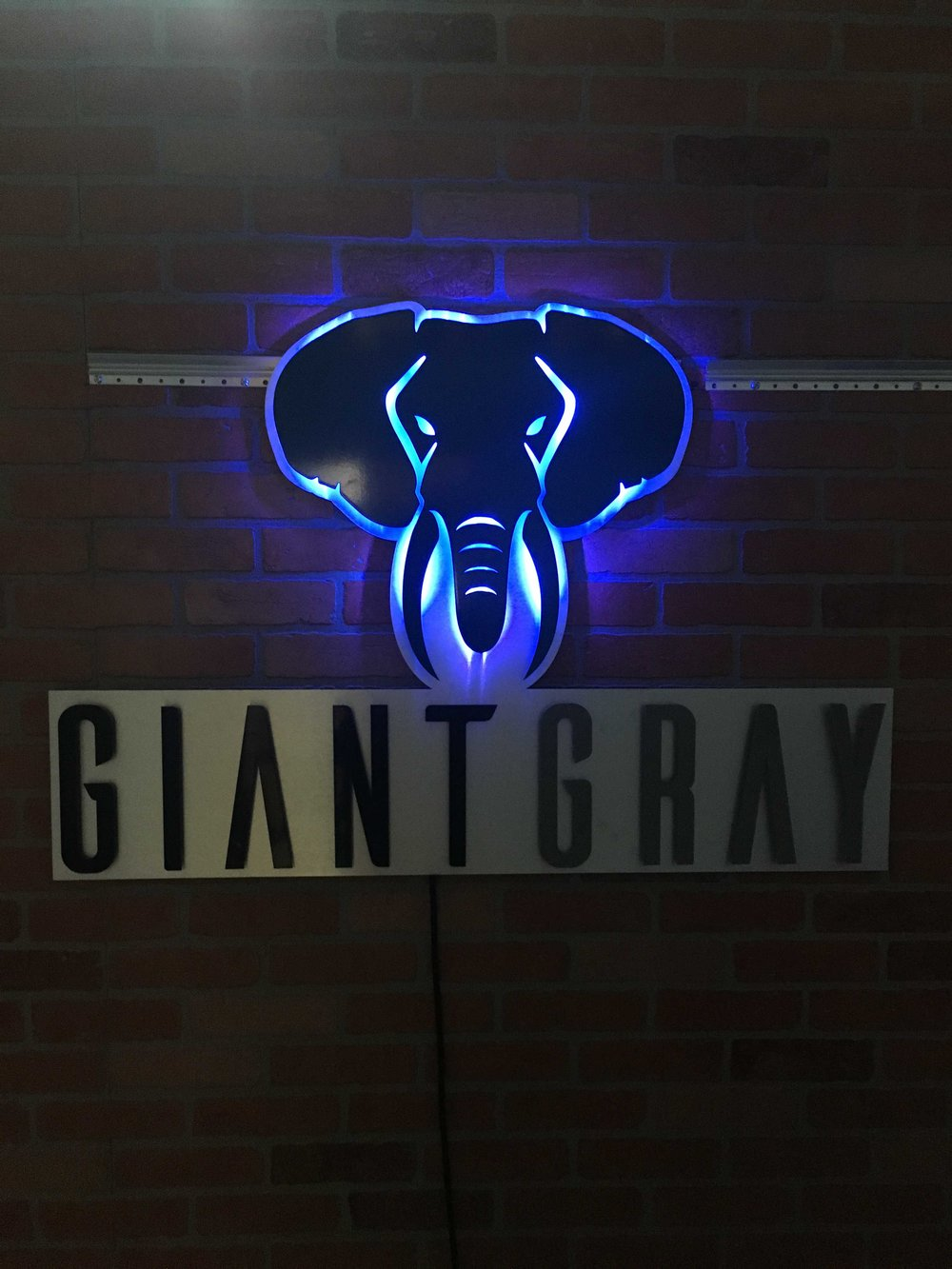 Copy of Custom Metal Lit Signage (9).jpg