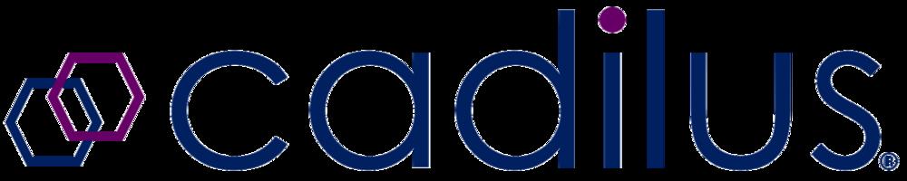 Cadilus-Logo-(R)-Transparent.png