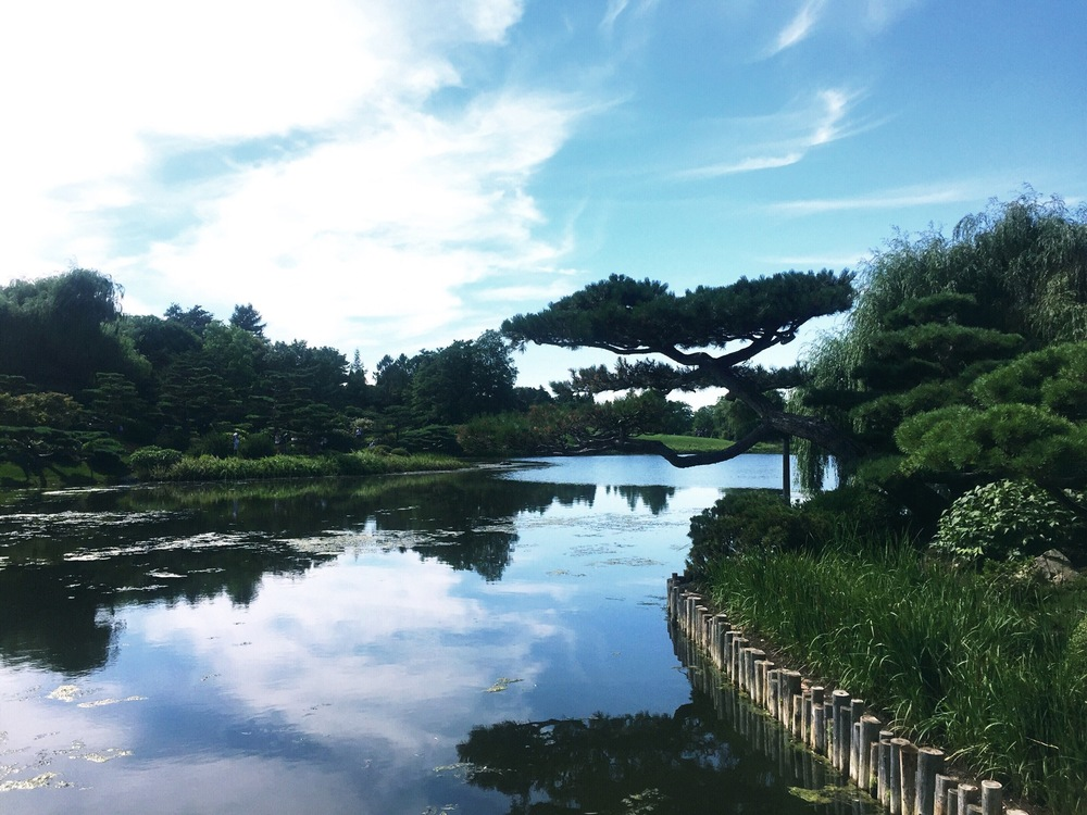 The view from just outside the Japanese Garden (located on an island!)