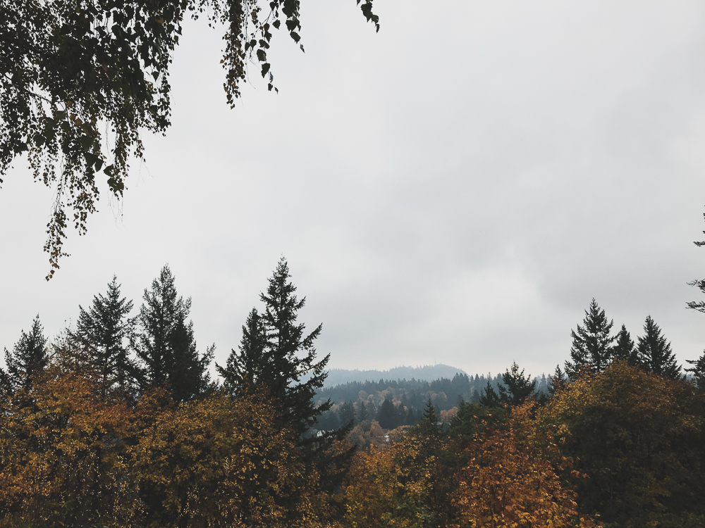 Views from the Pittock Mansion