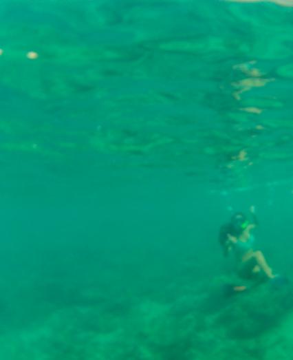 Underwater shot. Snorkel post.