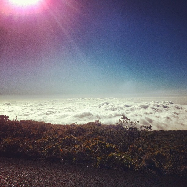 Above the Clouds on a Volcano #Haleakala #Maui (Taken with Instagram)
