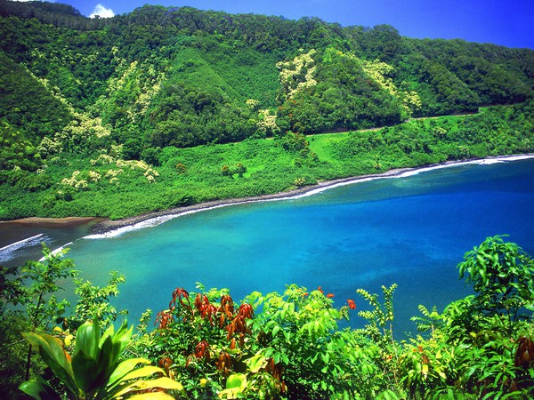 What lies before you on this Road to Hana will astonish your senses and stir your soul.