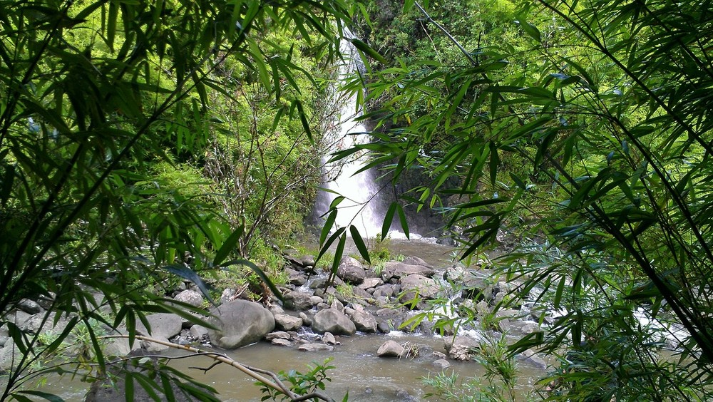 Hidden waterfalls. Road to Hana on Maui. http://theR2H.com