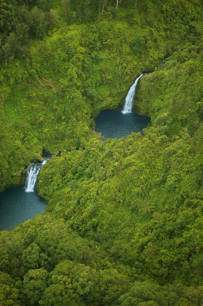 Water spilling down the ancient volcano into beautiful pools encircled by the jungle. This is #MAUI!