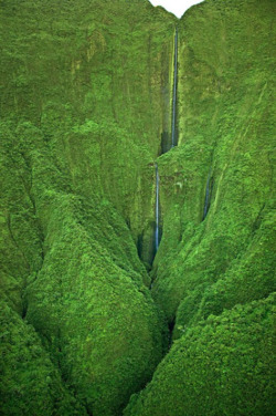 Have you seen a waterfall this tall? Good grief.