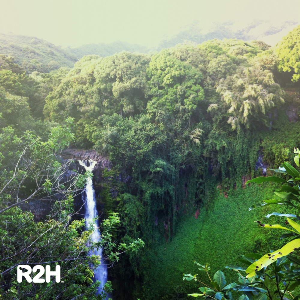 One of our favorite shots we've taken on the Road to Hana. This is Makahiku Falls on the Pipiwai trail in Kipahulu. Find this and more with the ADVENTUROUS + ROMANTIC Road to Hana CD.