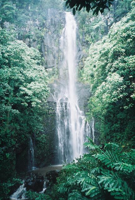 The majestic Waimoku Falls sings out before you…