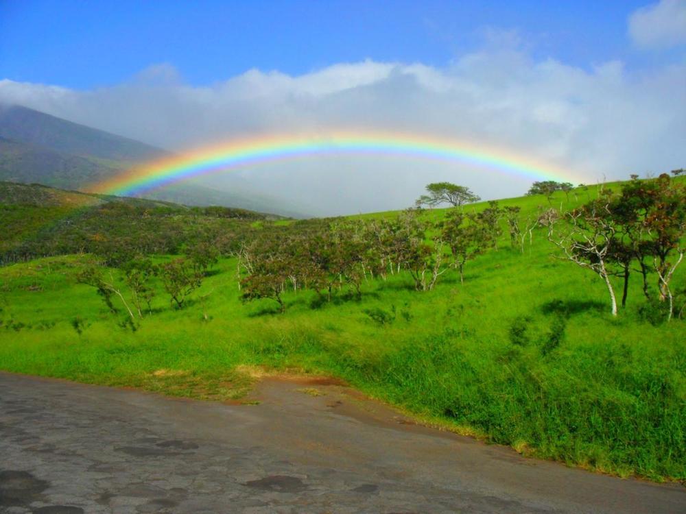 beardymatt: rainbow on the 'road to Hana' trip