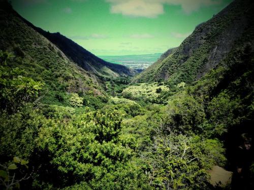 heavysecrets: Iao Valley, Maui Yesterday's hike was bomb.