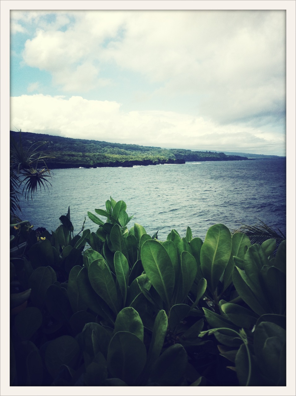 Where is this view on Maui? If you don't know, you should find out. One of Maui's hidden gems.