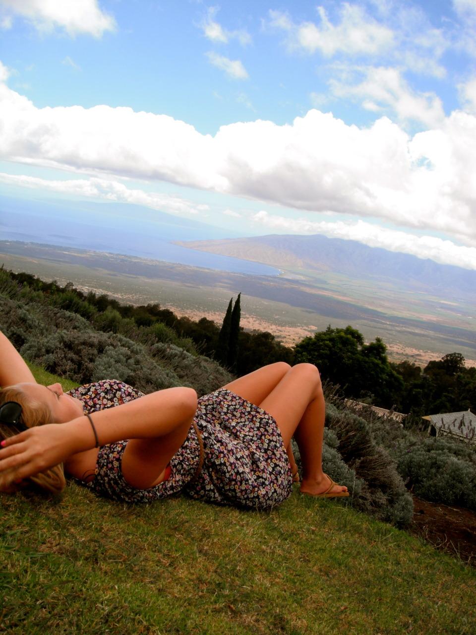 everything-is-taken: Maui Lavender Farm
