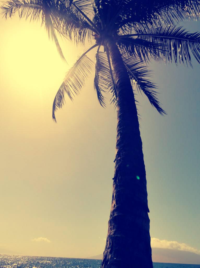 Ah, the island life…