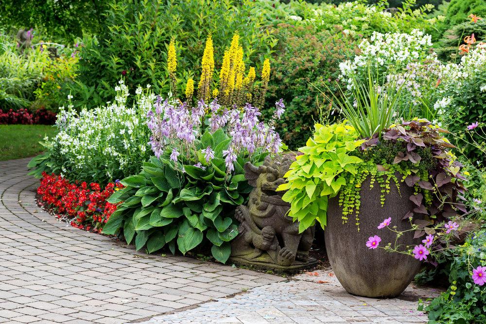 bigstock-Detail-of-a-beautiful-summer-g-89234105.jpg